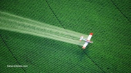 Chronic pesticide exposure causing lung damage in children, equivalent to health effects of second-hand cigarette smoke, studyfinds